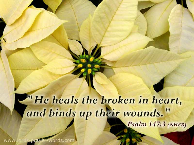 Quote on Healing a broken heart